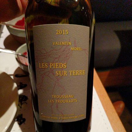 Valentin Morel Les Pieds Sur Terre Les Trouillots Trousseau 2015
