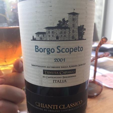 Borgo Scopeto (Tenuta Caparzo) Chianti Classico Sangiovese Blend 2001