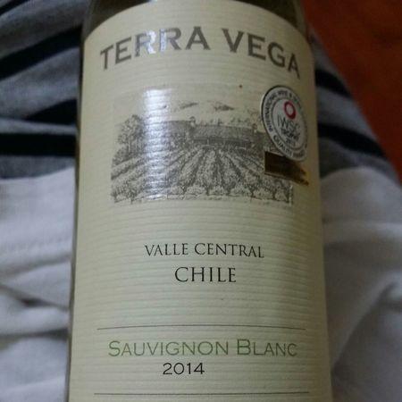 Terra Vega Valle Central Sauvignon Blanc 2016