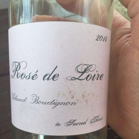 Thibaud Boudignon Rosé de Loire 2016