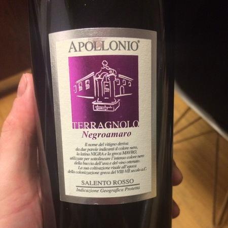 Casa Vinicola Apollonio  Terragnolo Salento Negroamaro 2011