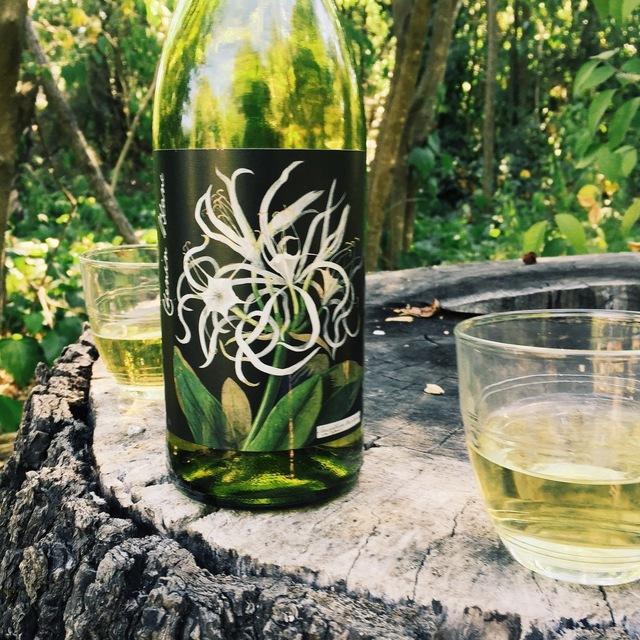 Citrusdal Mountain Chenin Blanc 2012