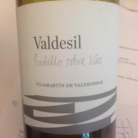 Bodegas Valdesil Sobre Lías Vilamartìn de Valdeorras Godello 2013