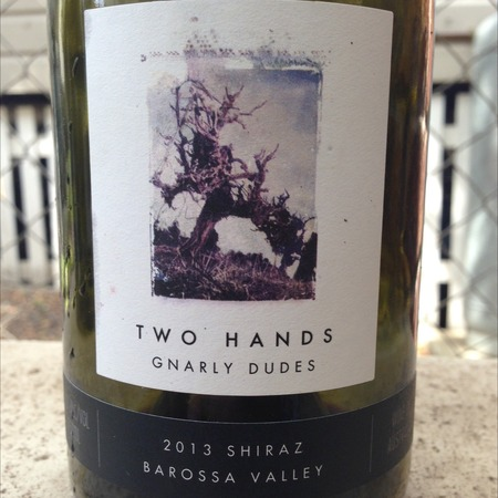 Two Hands Gnarly Dudes Barossa Valley Shiraz 2013