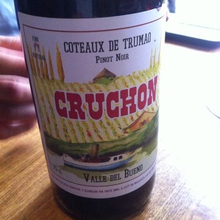 Louis-Antoine Luyt Cruchon Coteaux de Trumao Pinot Noir 2012