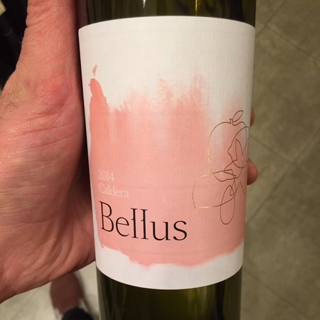 Bellus Wines Caldera Beneventano Falanghina 2015