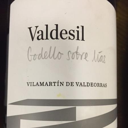 Bodegas Valdesil Sobre Lías Vilamartìn de Valdeorras Godello 2014