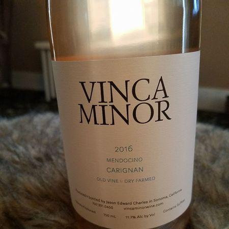 Vinca Minor Mendocino Carignan 2016