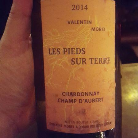 Domaine Morel Les Pieds Sur Terre Champ D'Aubert Chardonnay 2014