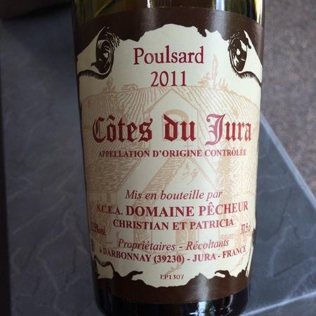 Domaine Pêcheur Côtes du Jura Poulsard 2015