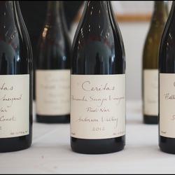 Hacienda Secoya Vineyard Pinot Noir