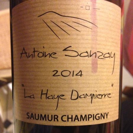 Antoine Sanzay Les Poyeux Saumur-Champigny Cabernet Franc 2014