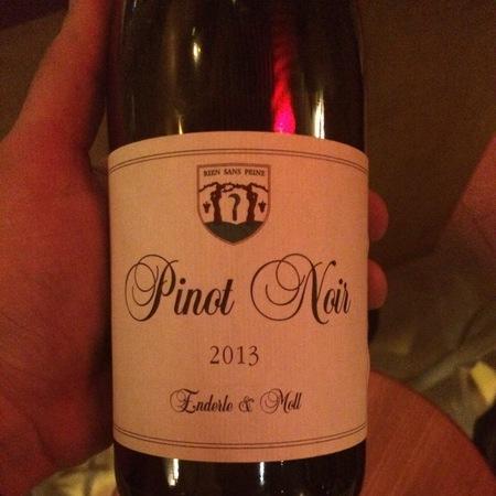 Enderle & Moll (Basis) Pinot Noir 2015
