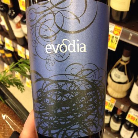 Altovinum Evodia Calatayud Old Vines Garnacha 2015